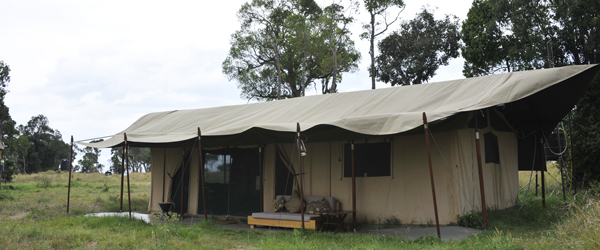 Lemala Mara Camp © Foto: Svenja Penzel | Outback Africa Erlebnisreise