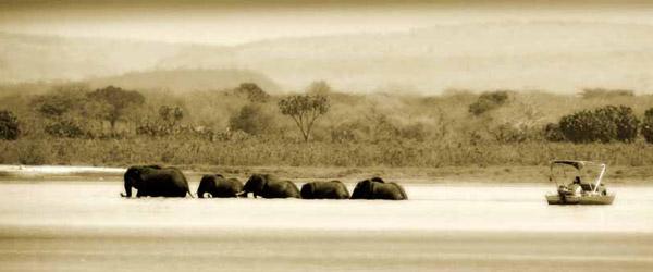 Siwandu, Boots-Safari