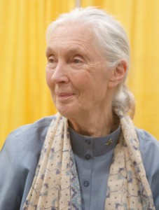 Jane Goodall im September 2011 © Foto: Angela George/wikimedia