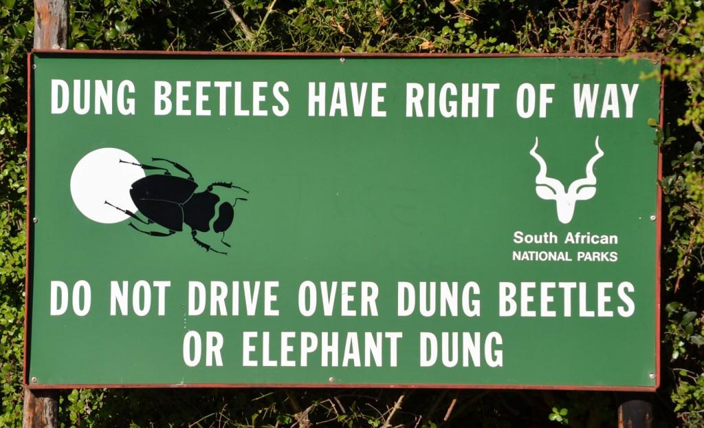 Hinweisschild im Addo Elephant Nationalpark © Foto: Ines Schulze