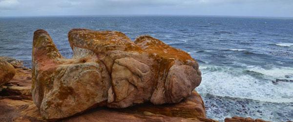 Felsen am Kap der Guten Hoffnung © Foto: Ines Schulze