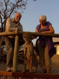 """Ingolf und Sieglinde mit """"Silvester"""", dem zahmen Geparden © Foto: privat"""
