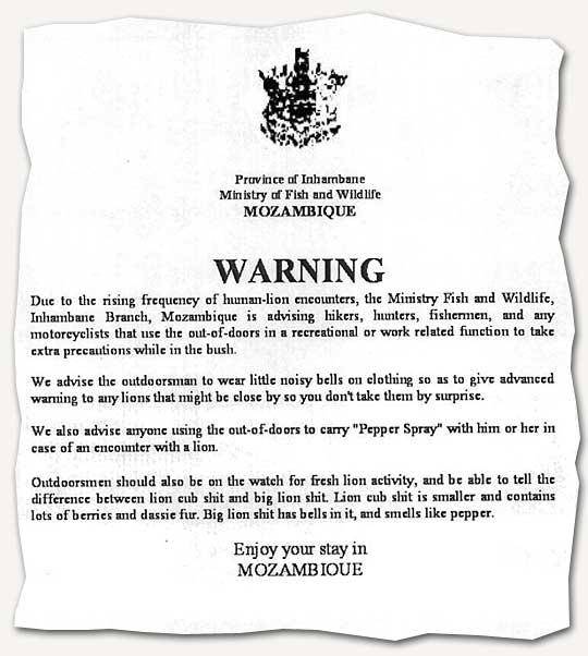 Löwen-Warnung in Mosambik
