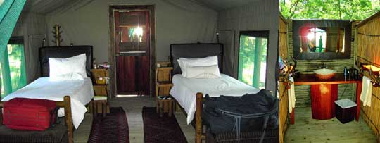 Die Zelte des Xakanaxa Camps werden sowohl als Einzel- und Zweibettbelegung als auch als Doppelbettbelegung angeboten. Das Bad ist geschmackvoll eingerichtet. © Fotos: Jens Döring