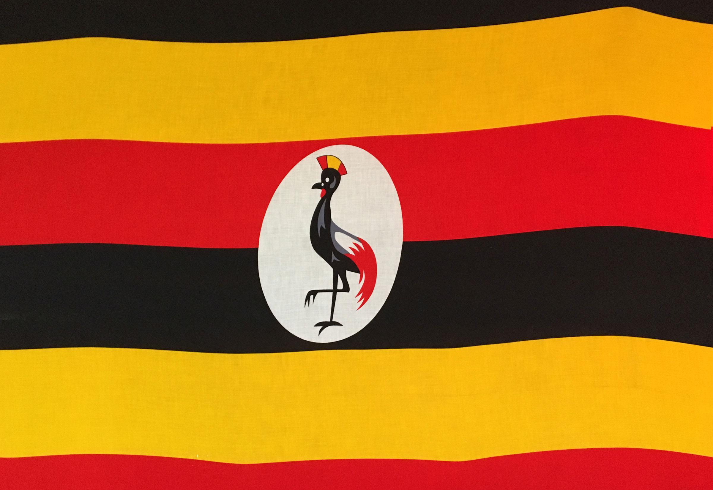 Rückblick Und Fazit Vergleich Uganda Mit Kenia Und Tansania
