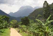 Landschaft im Süden Ugandas.