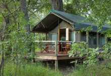 Zeltchalet Camp Moremi