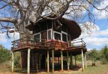 Tarangire Treetops  © Foto: Svenja Penzel   Outback Africa