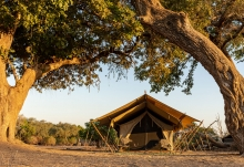 Zambezi Expeditions Camp, Zelt  © Foto: Marco Penzel | Outback Africa
