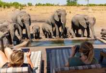 Elefanten am Somalisa Expeditions Camp  © Foto: Marco Penzel | Outback Africa