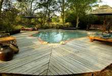 Pool der Mvuu Lodge mit Sonnenliegen  © Foto: Dana Allen
