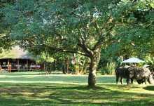 Falaza Game Park