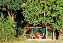 Gästezelt des Kwara Camp