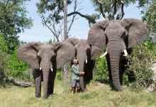 Doug Groves von Living with Elephants mit den Elefanten Tembi Marula and Jabu  © Foto: Sanctuary Retreats