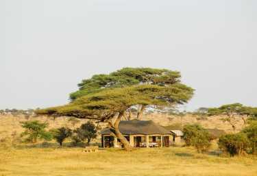 Namiri Plains Camp, Messezelt  © Foto: Asilia