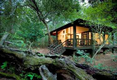 Phinda Forest Lodge, Außenansicht  © Foto: Beyond