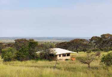 Serengeti Bushtops  © Foto: © 2010 SCANDERBEG SAUER PHOTOGRAPHY