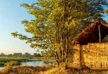 Mwaleshi Camp  © Foto: Remote  Safaris