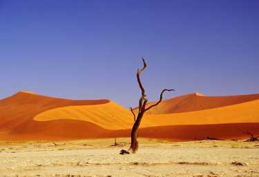 Dead Vlei, Namibia  © Foto: Mario Geissler