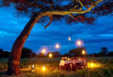 Busch-Dinner in der Serengeti  © Foto: © Paul Joynson-Hicks | Nasikia Camps