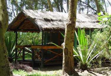 Moivaro Migunga Forest Camp