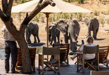 Elefanten am Pool des Somalisa Acacia Camps  © Foto: Marco Penzel   Outback Africa