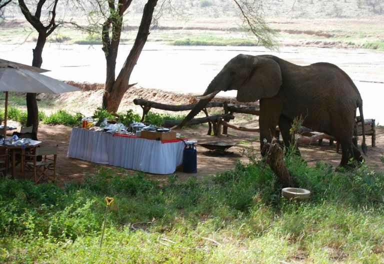 Elephant Bedroom Camp Samburu Game Reserve Kenia Reisen Individuelle Camps Und Lodges In